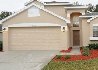 Pre Foreclosure in New Port Richey 34654 PALM BAY CT - Property ID: 1733634378