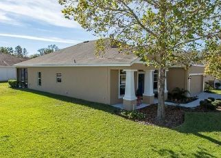 Pre Foreclosure in New Port Richey 34654 COBBS FERRY CT - Property ID: 1733638773