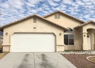 Pre Foreclosure in Pahrump 89060 VALDEZ CT - Property ID: 1735531694