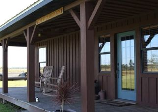 Pre Foreclosure in Ona 33865 NW LILY COUNTY LINE RD - Property ID: 1735873754
