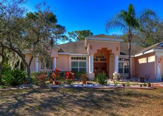 Pre Foreclosure in Plant City 33566 KILMER DR - Property ID: 1743227773