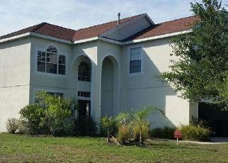 Pre Foreclosure in Apollo Beach 33572 CLOVER MIST DR - Property ID: 1747892632
