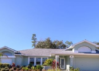 Pre Foreclosure in Palm Coast 32137 FRANCIS LN - Property ID: 1748055556