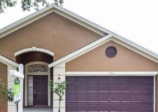 Pre Foreclosure in Tampa 33626 STAGHORN RD - Property ID: 1750417550