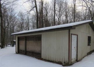 Pre Foreclosure in Gouldsboro 18424 SLY RAVENS TRL - Property ID: 1753816220