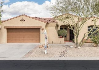 Pre Foreclosure in Gold Canyon 85118 S LUCKY SEVEN CT - Property ID: 1755772210