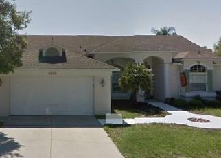 Pre Foreclosure in New Port Richey 34654 BENGAL LN - Property ID: 1772543556