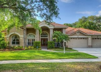 Pre Foreclosure in Tampa 33647 LONDONDERRY DR - Property ID: 1774791682