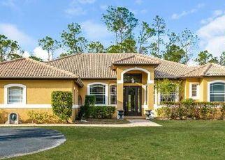 Pre Foreclosure in Naples 34120 10TH AVE NE - Property ID: 1779120612