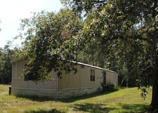 Pre Foreclosure in Middleburg 32068 MAYFLOWER ST - Property ID: 1780765197