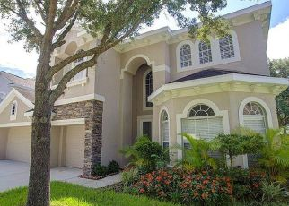 Pre Foreclosure in Tampa 33647 ARBOR CREEK DR - Property ID: 1783161802