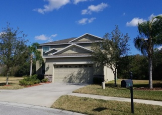 Pre Foreclosure in Tampa 33647 AUTUMN FERN AVE - Property ID: 1788706100