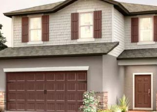 Pre Foreclosure in Wesley Chapel 33545 YALE HARBOR DR - Property ID: 1791186353