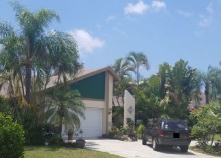 Pre Foreclosure in Cape Coral 33914 SW 9TH PL - Property ID: 1791286659