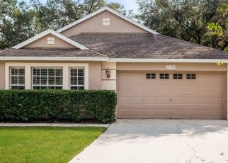 Pre Foreclosure in Brandon 33510 BRANDON PARK CIR - Property ID: 1796101748
