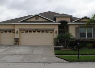 Pre Foreclosure in Orlando 32824 CROSSTON CIR - Property ID: 1801344286