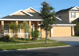 Pre Foreclosure in Tampa 33647 DAYTONA WAY - Property ID: 35393722