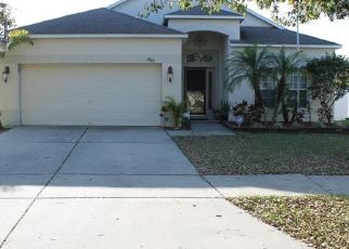 Pre Foreclosure in Ruskin 33570 ATLANTIC DR - Property ID: 658863726
