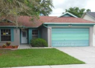 Pre Foreclosure in Valrico 33594 RUDDER DR - Property ID: 802483717