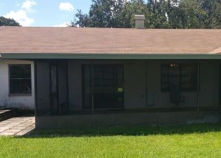 Pre Foreclosure in Brandon 33510 DOVE FIELD PL - Property ID: 946808409