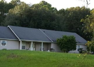 Pre Foreclosure in Middleburg 32068 GREEN MEADOWS DR - Property ID: 953270267