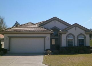 Pre Foreclosure in Hernando 34442 W SKYVIEW CROSSING DR - Property ID: 955757532