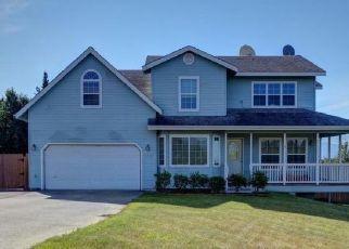 Pre Foreclosure in Palmer 99645 E WILDERNESS CIR - Property ID: 963513161