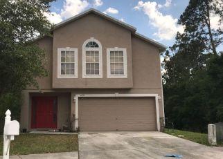 Sheriff Sale in Wesley Chapel 33545 TABOGI TRL - Property ID: 70112522973