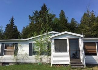 Sheriff Sale in De Tour Village 49725 DEMOCRAT RD - Property ID: 70137327619