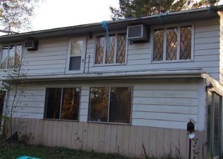 Sheriff Sale in Beaverton 48612 E KNOX RD - Property ID: 70145573799