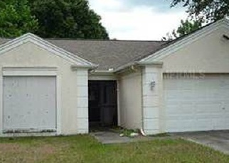 Sheriff Sale in Lutz 33559 BAKER RD - Property ID: 70167633671