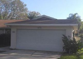 Sheriff Sale in Tampa 33625 LADY BUG CT - Property ID: 70168434278