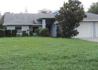 Sheriff Sale in Odessa 33556 WELLESLY CT - Property ID: 70184029217