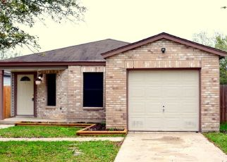 Sheriff Sale in San Antonio 78244 CANDLEBLUFF DR - Property ID: 70194658867