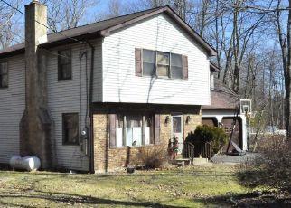 Sheriff Sale in East Stroudsburg 18301 BULL PINE RD - Property ID: 70208688919