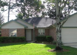 Sheriff Sale in Jacksonville 32225 CHANDELIER CIR E - Property ID: 70211364495