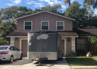 Sheriff Sale in Riverview 33578 LAS BRISAS DR - Property ID: 70214441258