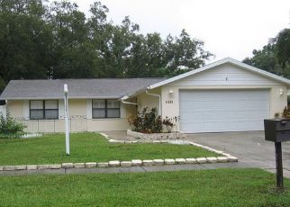 Sheriff Sale in Tampa 33624 WOODLARK DR - Property ID: 70215097341