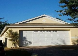Sheriff Sale in Riverview 33569 LAKESIDE VISTA DR - Property ID: 70215098667
