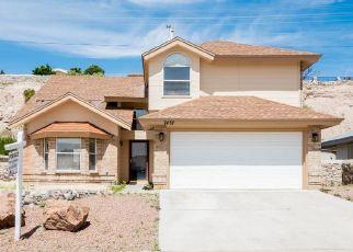 Sheriff Sale in El Paso 79912 LE CONTE DR - Property ID: 70221842588