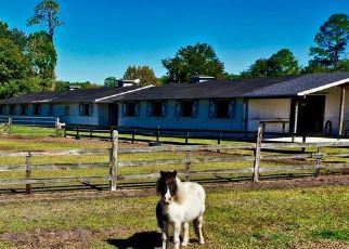 Sheriff Sale in Fernandina Beach 32034 LITTLEBERRY LN - Property ID: 70229751967