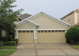 Short Sale in Tampa 33647 OLD TOWN DR - Property ID: 6292053282