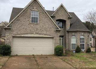 Short Sale in Memphis 38135 TULIP RUN DR - Property ID: 6329539931