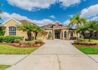 Short Sale in Odessa 33556 ABYSS DR - Property ID: 6330134241