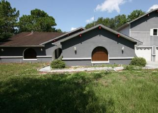 Short Sale in Hernando 34442 N EISENHOWER AVE - Property ID: 6331326858
