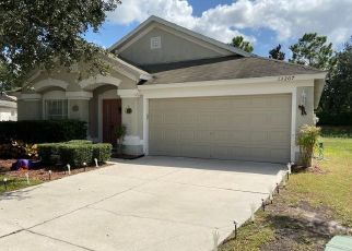 Short Sale in Riverview 33579 EVENING SUNSET LN - Property ID: 6332382368