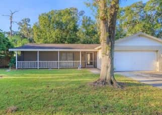 Short Sale in Brandon 33511 SOUTHVIEW DR - Property ID: 6333275394