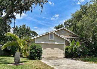Short Sale in Palm Harbor 34684 DEER RUN N - Property ID: 6335427155