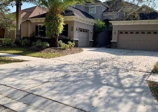 Short Sale in Tampa 33647 MOSS HILL WAY - Property ID: 6336760354