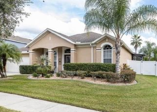 Short Sale in Wesley Chapel 33543 JUNEBERRY DR - Property ID: 6337429586